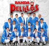 Banda Pelillos – No Te Enamoraste De Mi (letra y video oficial)