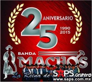 Banda Machos recibirá homenaje en Chicago