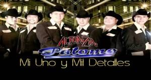 Palomo – Mi Uno y Mil Detalles (Letra Y Video Oficial)