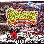 losyaguaruenlapazamexico