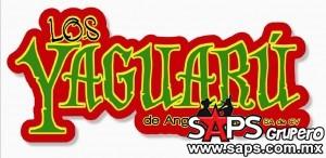 yaguaru logo