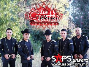 Los Cuates De Sinaloa son un éxito en su gira por Estado Unidos