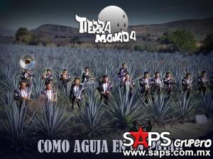 banda_tierra_mojada