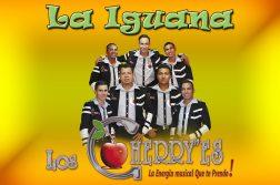 la iguana los cherries
