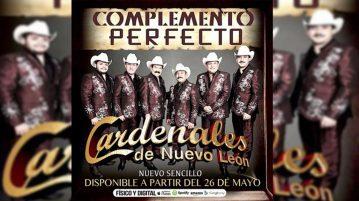 Cardenales De Nuevo León Complemento Perfecto