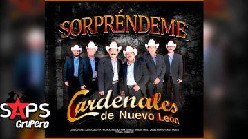 Cardenales de Nuevo León, Sorpréndeme