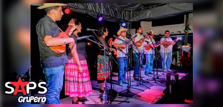 Festival del Tesechoacán, Playa Vicente
