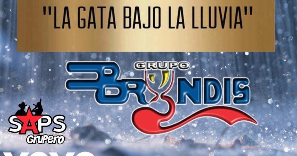 Grupo Bryndis, La Gata Bajo La Lluvia