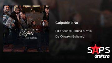 Luis Alfonso Partida El Yaki, Culpable O No