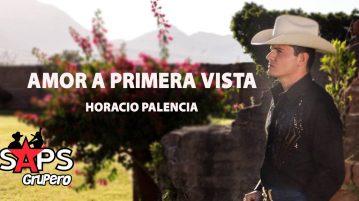 Horacio Palencia, Amor A Primera Vista
