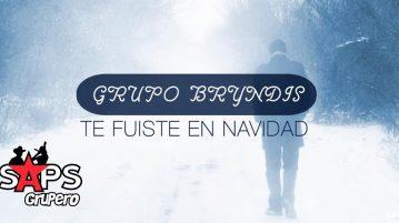 Grupo Bryndis, Te Fuiste En Navidad