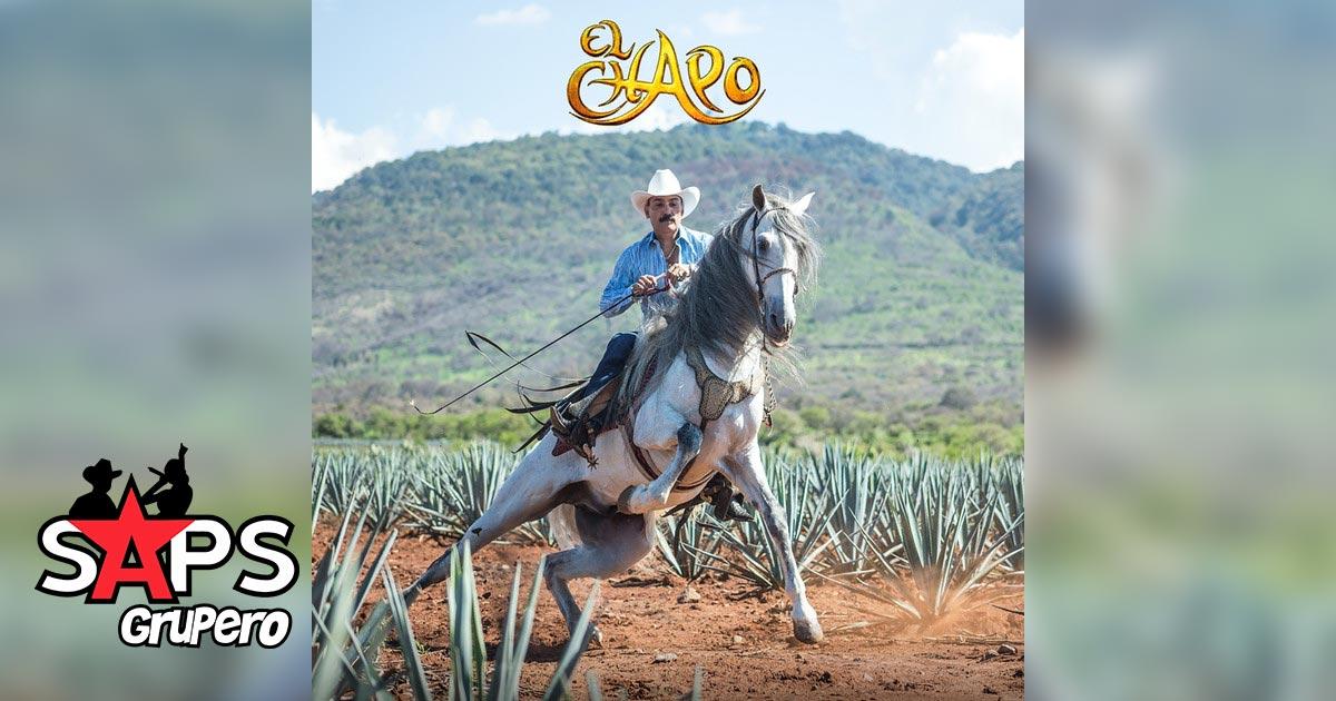 EL CHAPO DE SINALOA, EL MAGO
