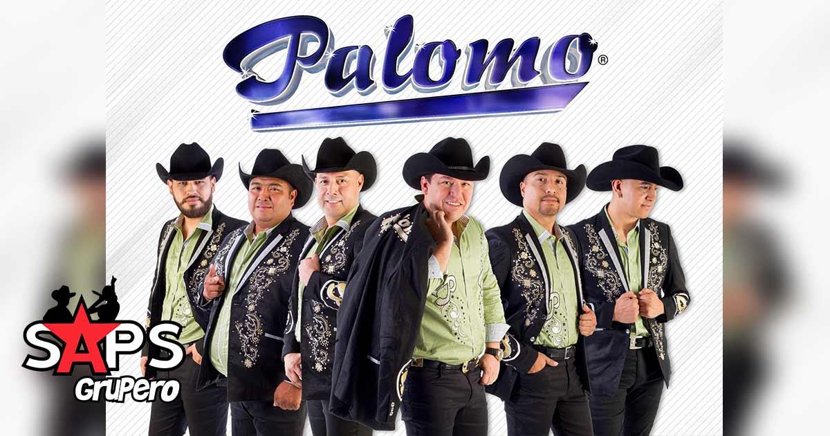 Palomo, presentaciones