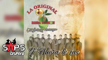 La Original Banda El Limón, Y AHORA TE VAS