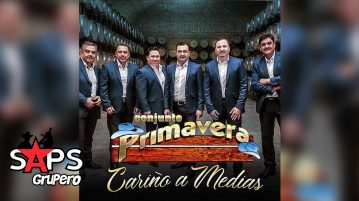Conjunto Primavera, CARIÑO A MEDIAS