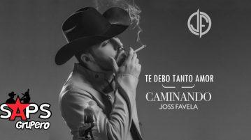 JOSS FAVELA, TE DEBO TANTO AMOR,