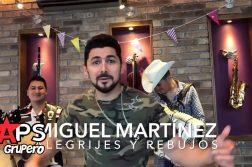 MIGUEL MARTÍNES, ALEGRIJES Y REBUJOS,