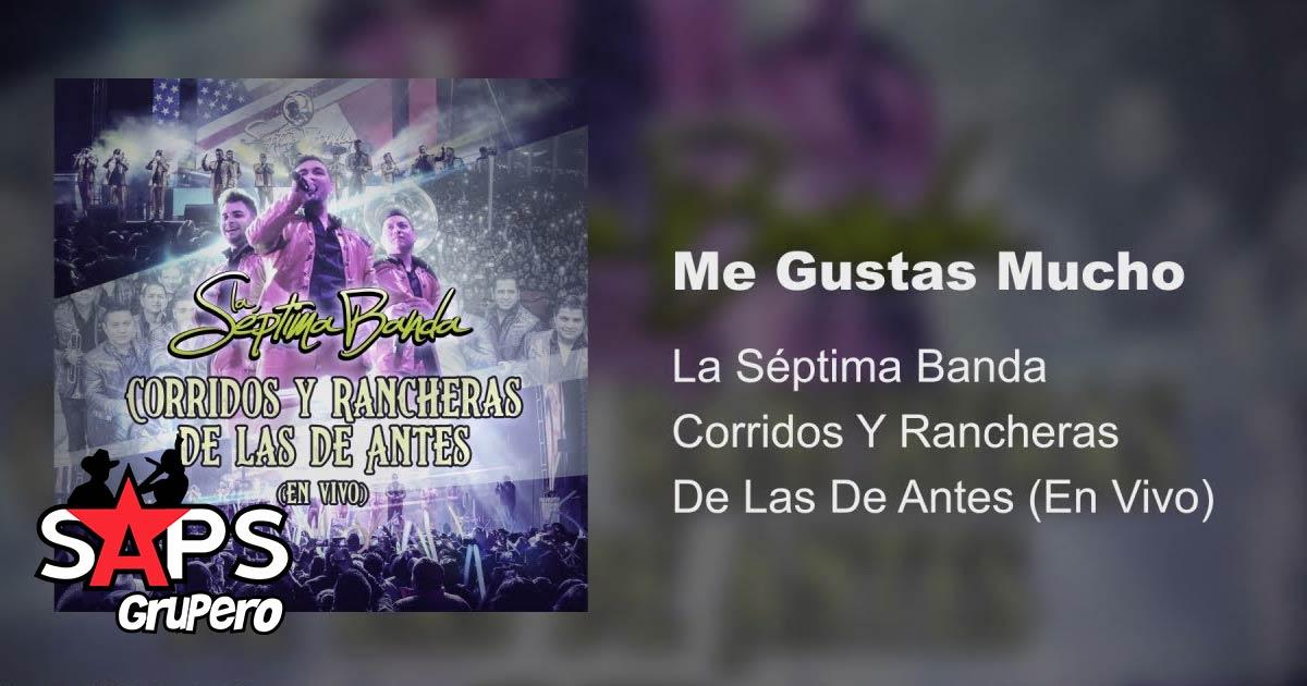Letra Me Gustas Mucho La Séptima Banda