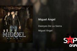 DAREYES DE LA SIERRA, MIGUEL ÁNGEL