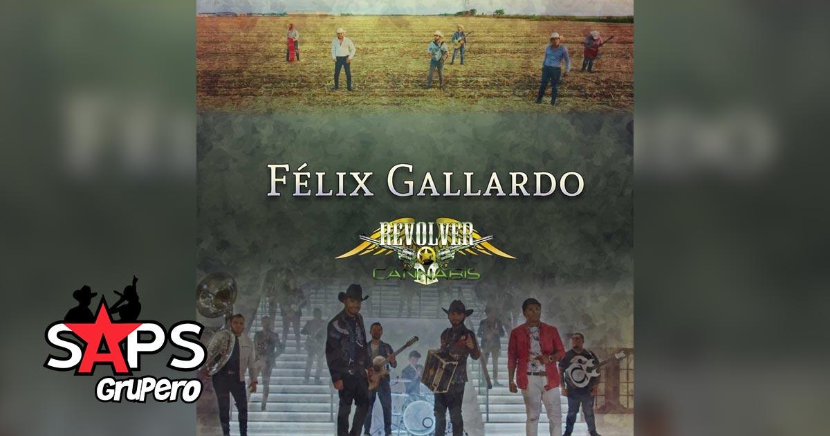 REVOLVER CANNABIS, FELIX GALLARDO