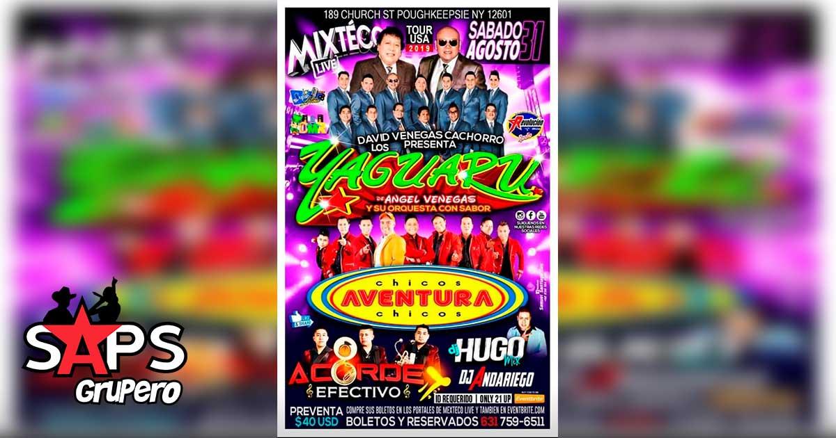 Mixteco Live
