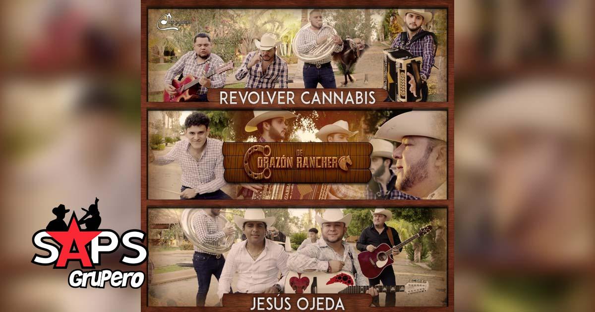 DE CORAZÓN RANCHERO, REVOLVER CANNABIS, JESÚS OJEDA
