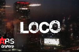 LOCO, ZONE THE FLOW