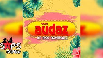Grupo Audaz