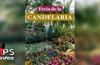 Feria de la Candelaria