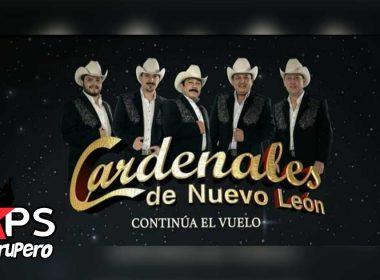 Cardenales de Nuevo León