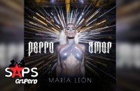 María León, Perro Amor