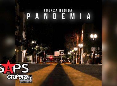 Fuerza Regida, Letra Pandemia