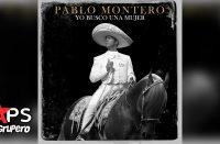 Letra Yo Busco una Mujer, Pablo Montero