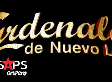 Cardenales de Nuevo León, Discografía