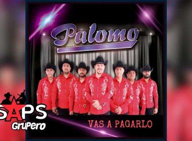 Letra Vas A Pagarlo – Palomo
