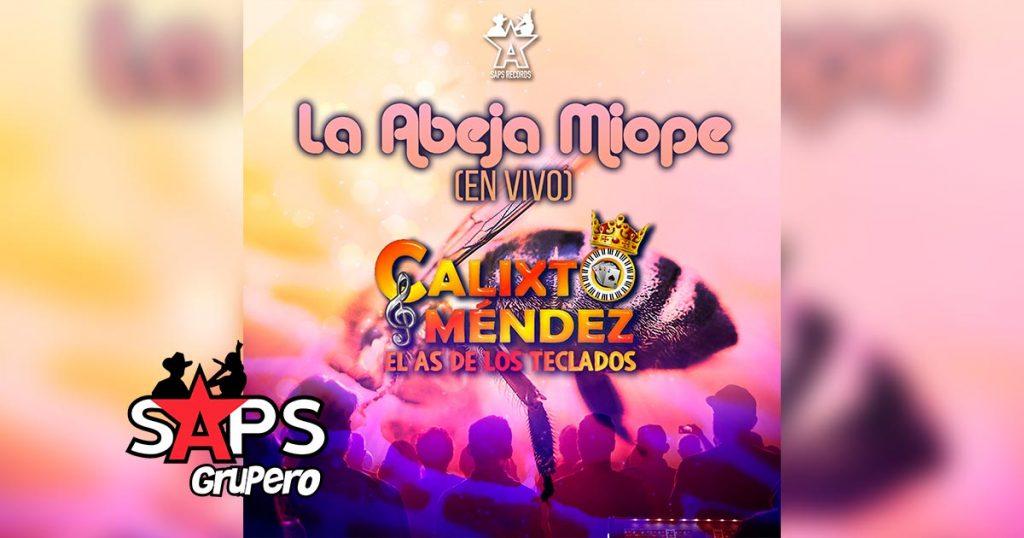 """Letra La Abeja Miope, Calixto Mendez """"El As de los Teclados"""""""