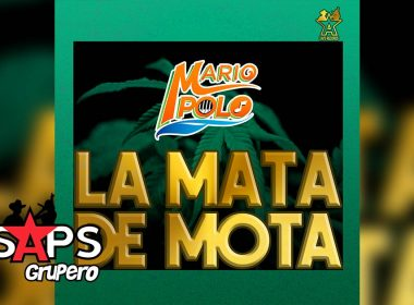 Letra La Mata De Mota, Mario Polo