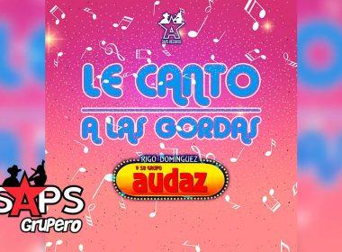 Letra Le Canto A Las Gordas, Rigo Domínguez Y Su Grupo Audaz