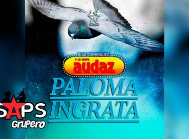 Letra Paloma Ingrata – Rigo Domínguez Y Su Grupo Audaz