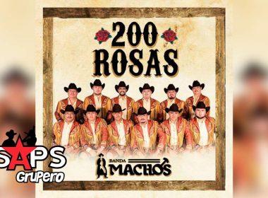 Letra 200 Rosas – Banda Machos